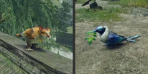《魔物獵人 崛起/モンスターハンターライズ/Monster Hunter Rise/MHR/動作》全環境生物作用及位置